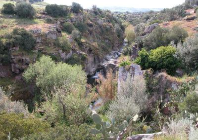 Piscina Naturale  La Rondine
