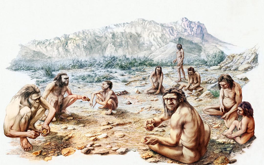 Viaggio nella preistoria della sardegna al museo di Perfugas