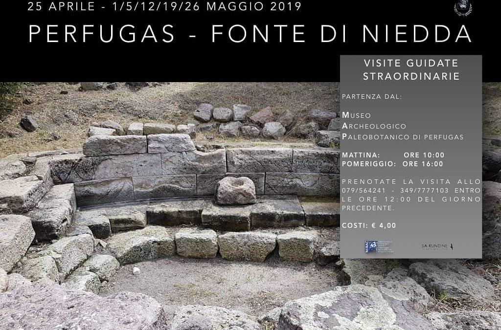 Visita guidata fonte di Niedda Perfugas